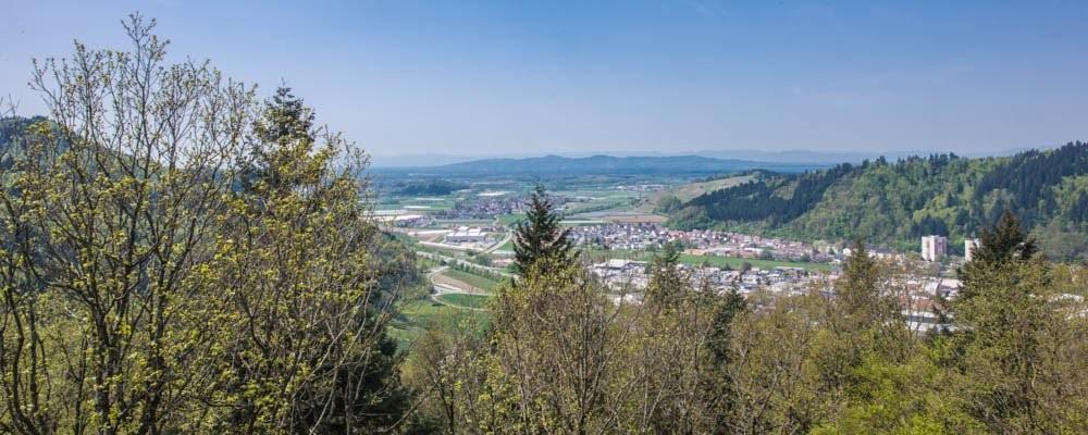 baumkronenweg_waldkirch_085